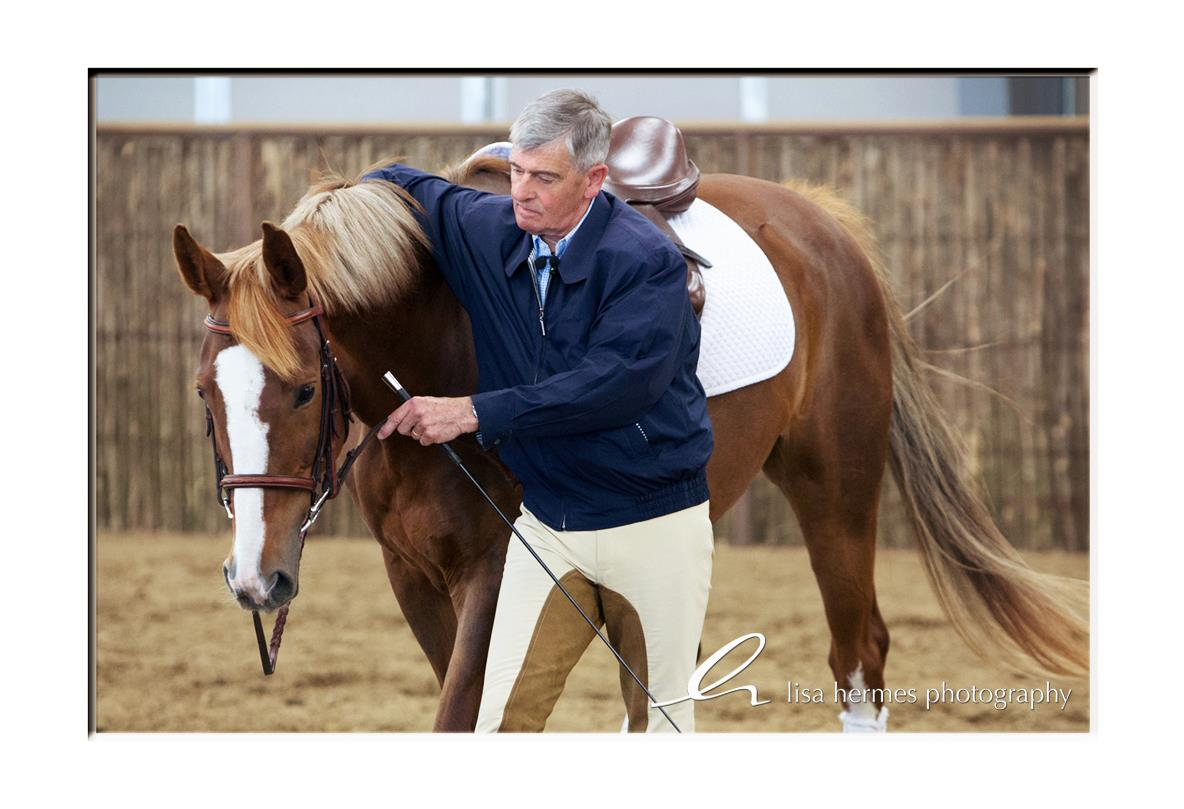 Colonel Carde Christian Carde demonstrating in-hand work with one the symposium's horses.